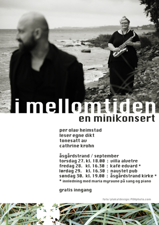 Photo of Poster for my 2012 tour in Åsgårdstrand